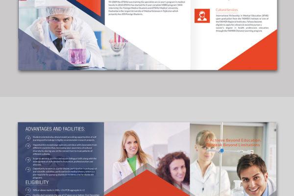 PORTFOLIO - Infographic Design Company   Best Infographic Design ...